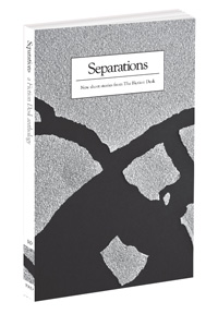 Cover of Separations: The Fiction Desk Volume 10